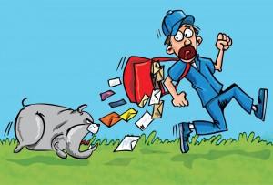 postal carrier dog bite lawyer
