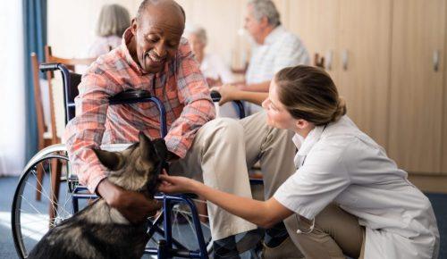 Virginia nursing home abuse attorney